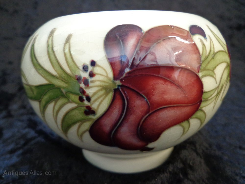 Antiques Atlas Moorcroft Quot Anemone Quot Pattern Bowl