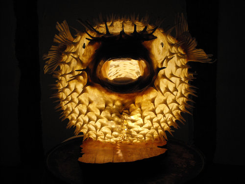 antiques atlas taxidermy puffer porcupine fish lamp