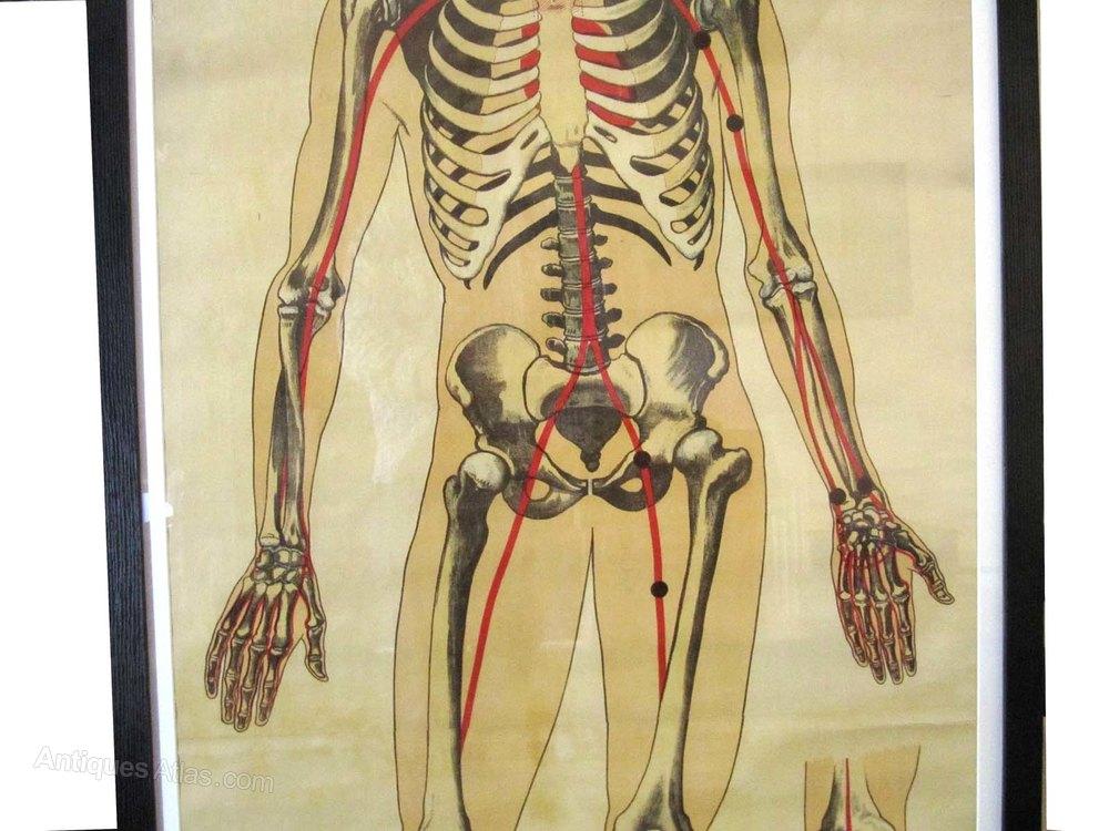 Antiques Atlas - St John's Ambulance Training Poster C. 1948