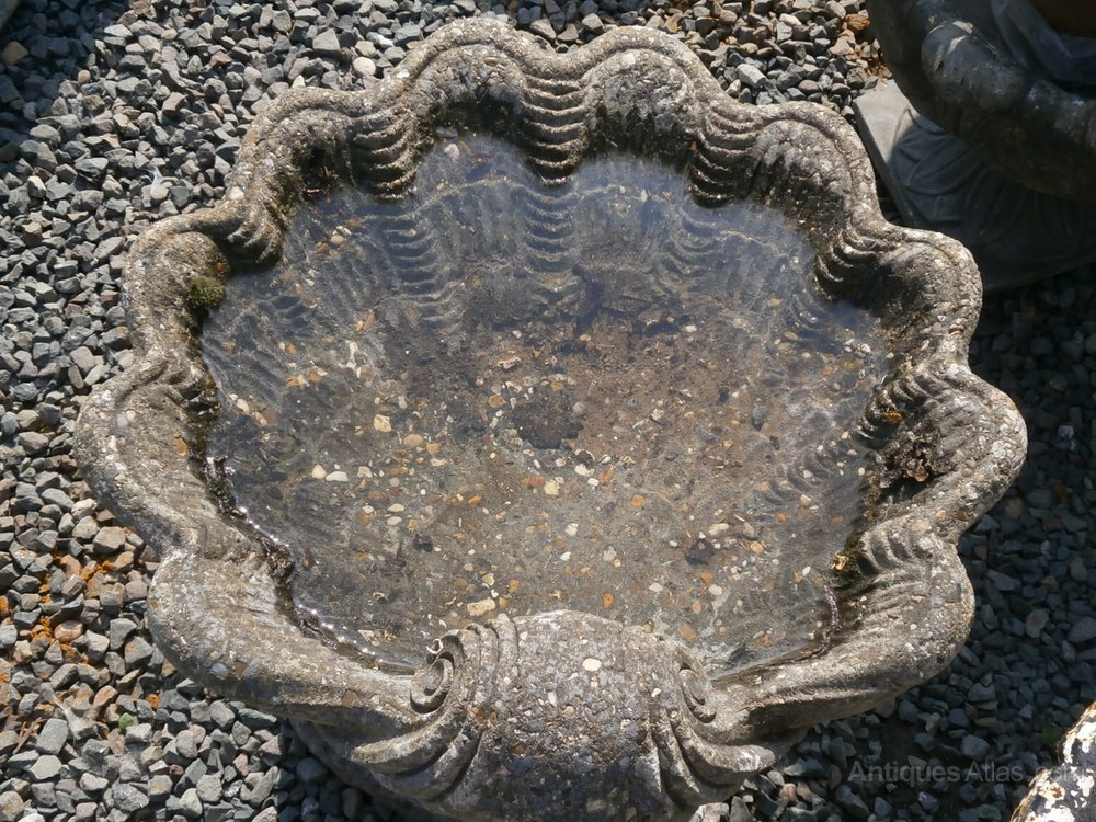 Antiques Atlas Clam And Dolphin Bird Bath