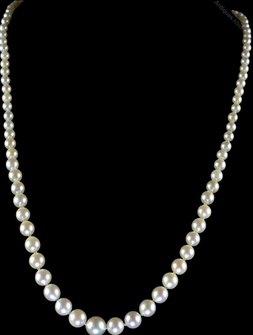 Antiques Atlas Victorian Pearl Necklace With Diamond Clasp
