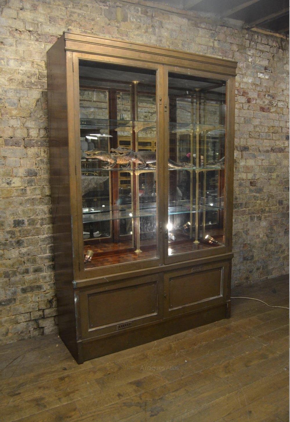 Bronze Shop Display Cabinet Antiques Atlas