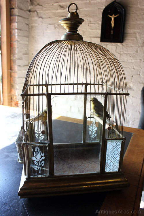 Antiques Atlas Architectural Bird Cage With Taxidermy