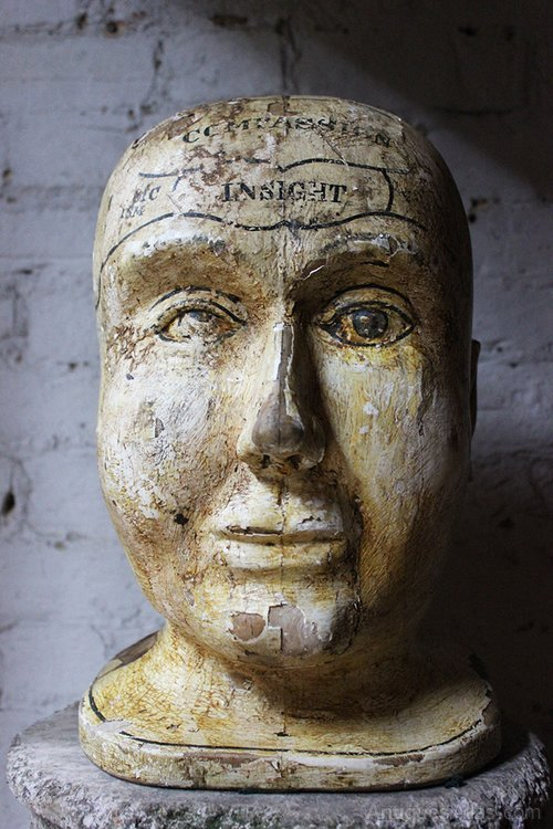 Painted Pine Folk Art Phrenology Head
