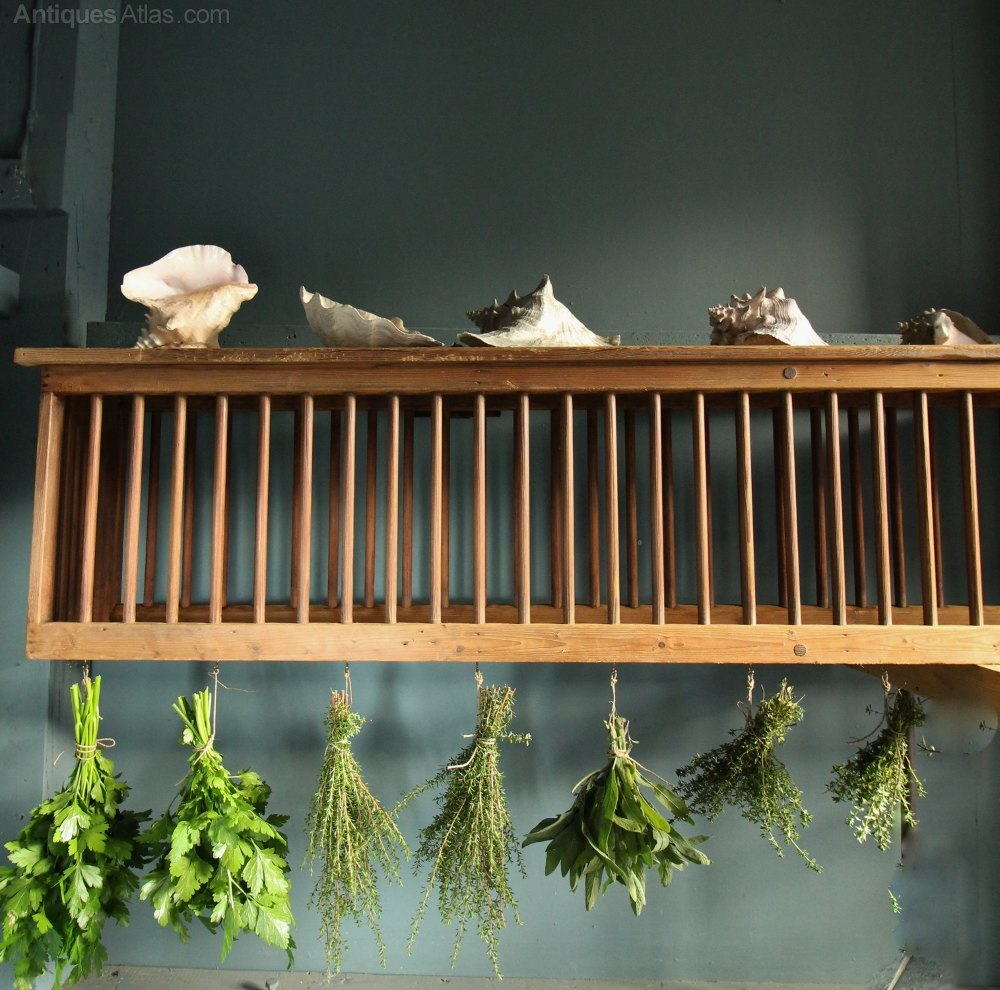 Monumental Georgian Pine Plate Rack