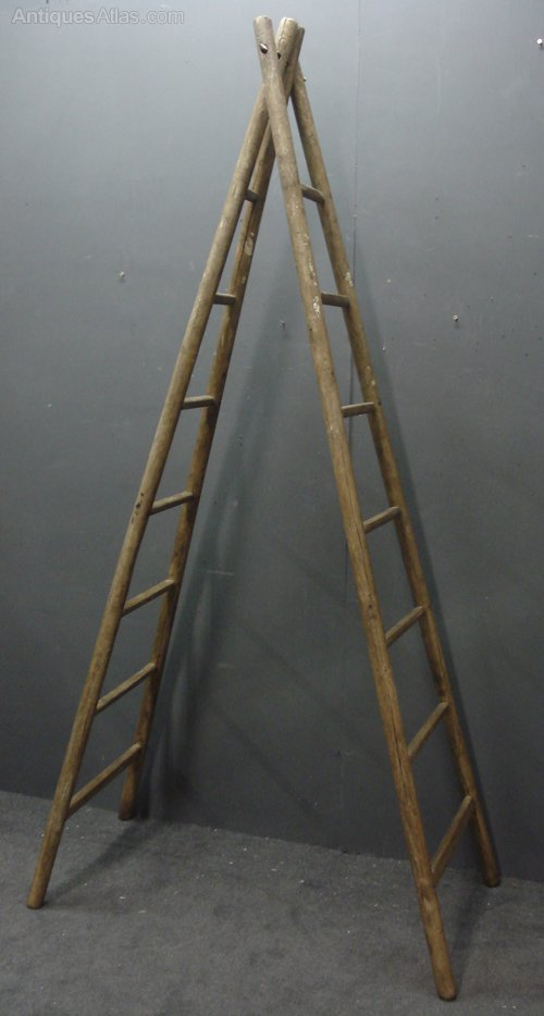 Antique French Fruit Picking Ladders Antiques Atlas