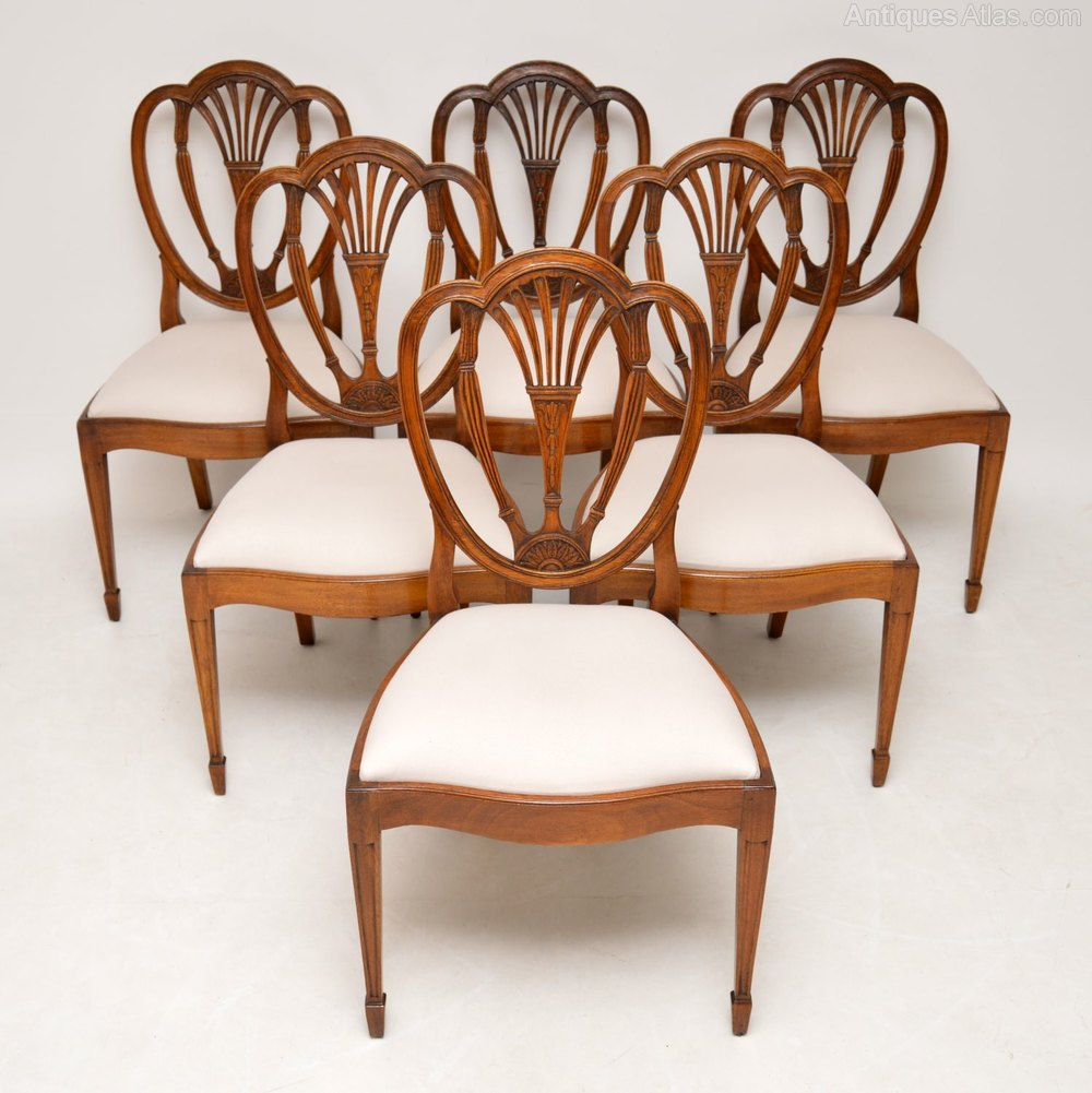 6 Antique Mahogany Sheraton Style Dining Chairs - Antiques ...