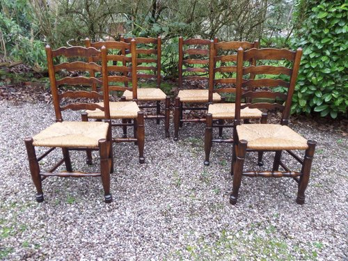 6 Ladderback ash and elm chairs perfect c1830