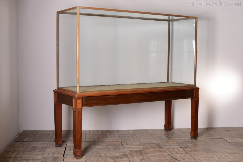 Antique Display Cabinets ... - Edwardian Antique Museum Exhibit Cabinet. - Antiques Atlas