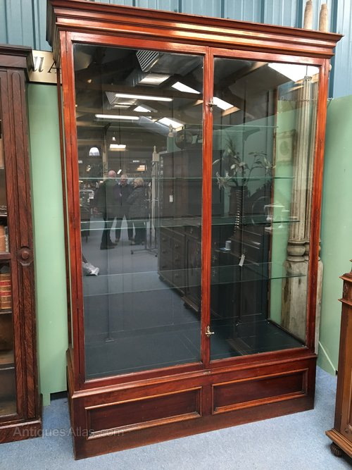 Large Scottish Shop Display Cabinet - Large Scottish Shop Display Cabinet - Antiques Atlas