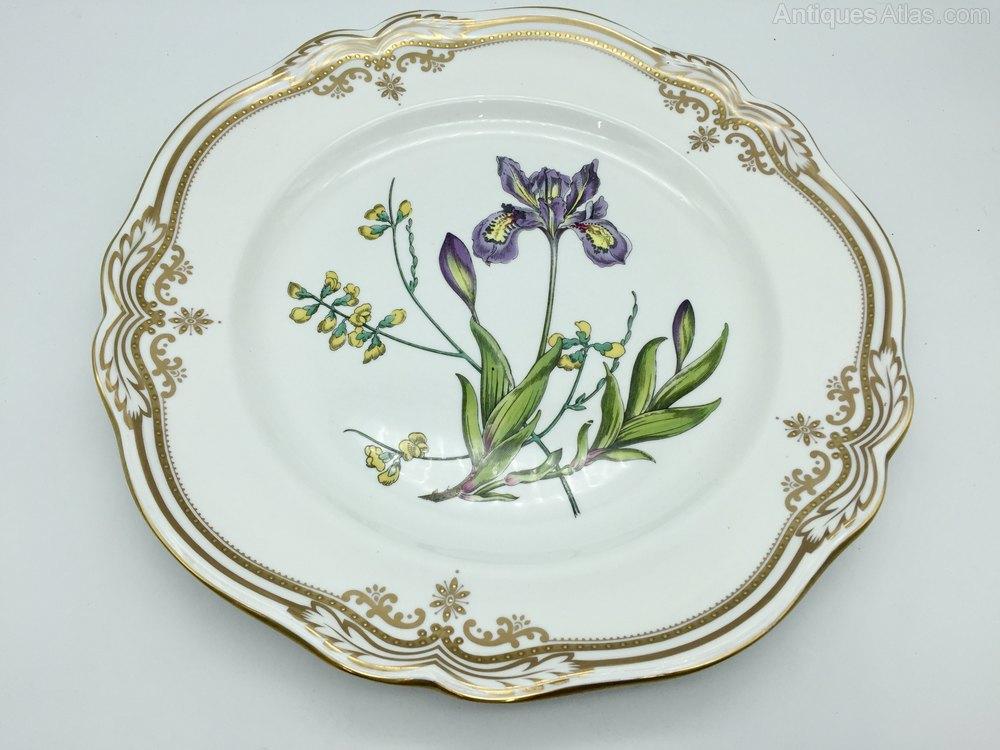 100+ spode plates speciman pr stafford flowers antique